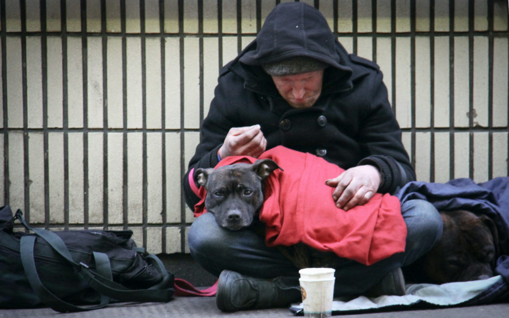 A man in a black coat rough sleeping with two dogs